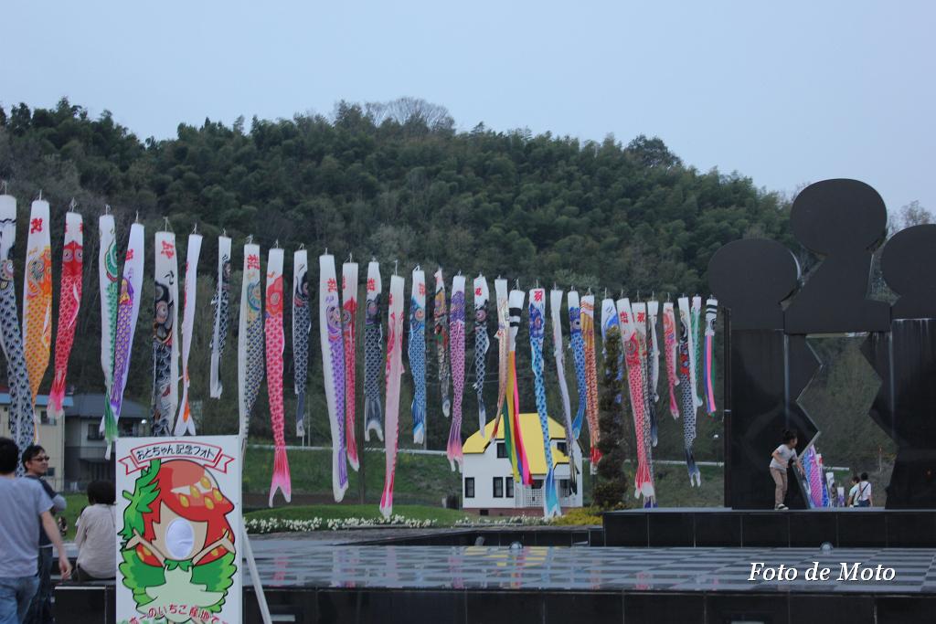 a big carp display