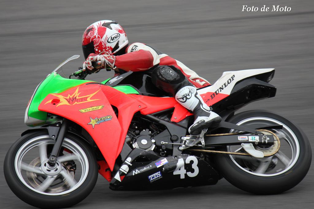 CBR250R #43 TEAM.WILD☆HEART 菊地 平 Honda CBR250R